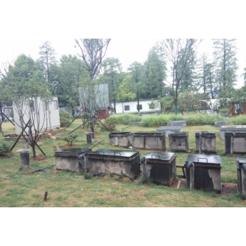 景区污水地埋式MBR处理系统