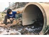 芬顿氧化一絮凝沉淀处理焦化废水应用研究