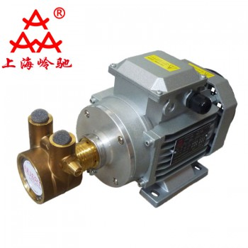 NUERT纳特PRG8AS-750W380V旋转叶片泵高压燃油泵