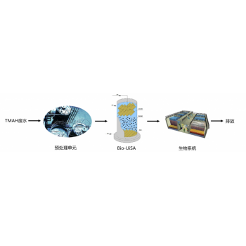 Bio-UiSA TMAH废水高效厌氧反应器