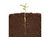 """土壤质量亟待全面""""体检"""" 土壤监测仪器仪表迎机遇"""