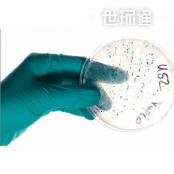 军团菌控制技术| LPB