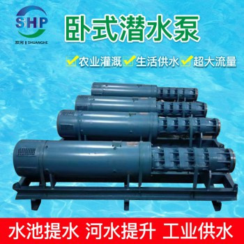 大流量卧式潜水泵-卧式潜水泵厂家-卧式潜水泵-卧式深井泵-卧式潜水泵-双河泵业