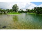 南京发布20项水环境整治工程