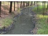 污水是放错的资源——从国外经验看我国污水的资源化发展