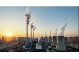 浙江省有力推进碳达峰碳中和工作