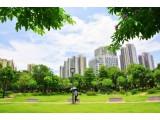 王凯:碳中和愿景下的城市绿色发展