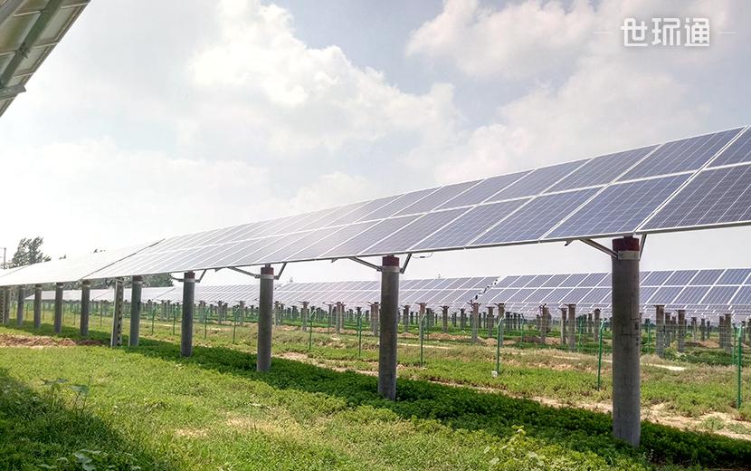 山东菏泽光伏发电项目(农光互补项目)