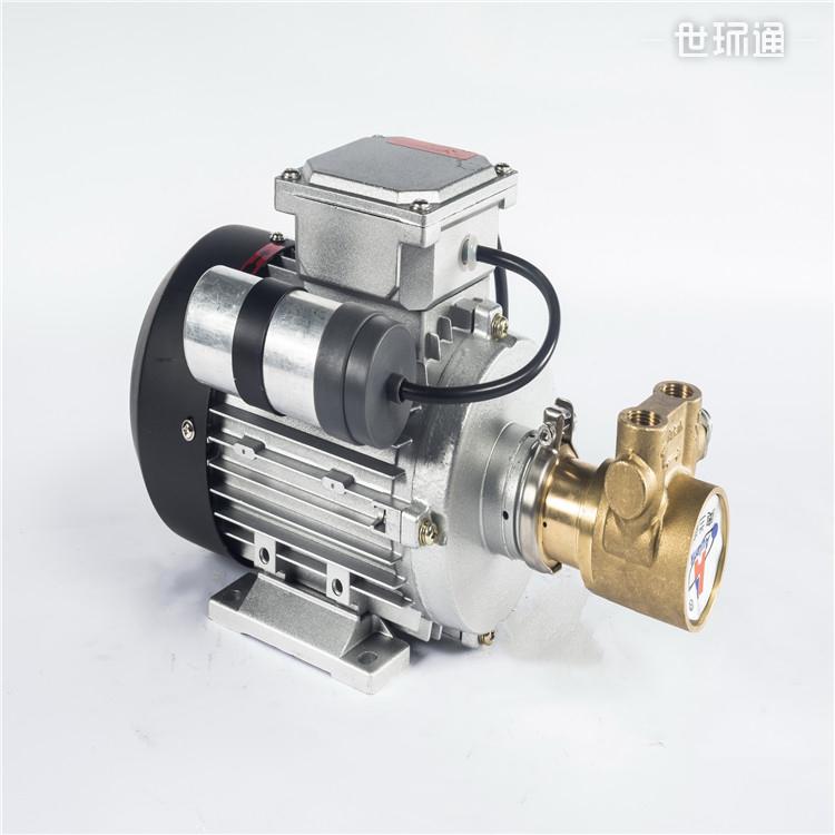 新能源燃烧机用泵