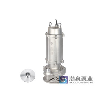 WQ( D)X-S 不锈钢精密铸造高扬程污水泵 (丝口出水)