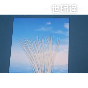 聚丙烯微滤膜丝