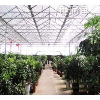 智能阳光板温室大棚报价 阳光板生态展览温室 玻璃温室价格 温室配件厂家