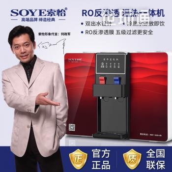 索怡(SOYE)家用净水器 RO反渗透 生态温热一体直饮机 大通量纯水机 1008C新款